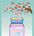 mason jar tree branch flowers decoration vector image vector image