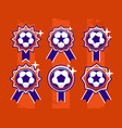 modern professional set of balls emblem and vector image vector image