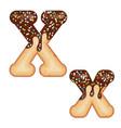 tempting typography font design 3d donut letter x vector image vector image