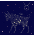 Zodiac sign Taurus on the starry sky vector image vector image