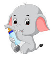 baby elephant with milk bottle vector image