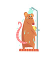 cute cartoon rat rubbing himself a foam sponge vector image vector image