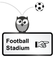 Football Stadium vector image vector image
