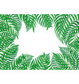 frame tropical leaves vector image vector image