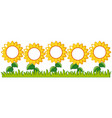 sunflowers garden with writing space vector image vector image