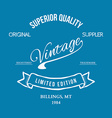 Vintage retro t-shirt typography vector image