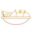 bowl with fruit fresh nutrition vitamins food vector image