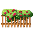 A flowering plant with a fence vector image vector image