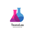 Flask triangle and round with color liquid inside vector image