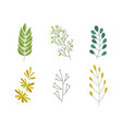 flat abstract green plant icon vector image vector image