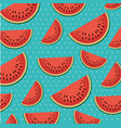 fresh watermelons sliceds pattern vector image