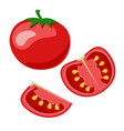icon of a red tomato isolated on white background vector image vector image