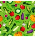 Seamless pattern of freshly harvested vegetables vector image vector image