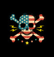 skull with flag usa vector image vector image