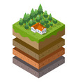 soil layers cross section geological green grass vector image