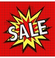 The icon with the word SALE vector image vector image