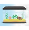 transparent aquarium 03 vector image vector image