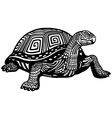 turtle black white vector image