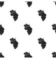 bunch of yellow grapes icon in black style vector image