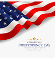 celebration flag america independence day vector image