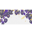 colorful birthday balloons and confetti festive vector image