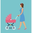 elegant woman with pink carriage baby walking vector image