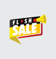 flash sale banner vector image vector image