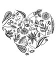 heart floral design with black and white aloe vector image vector image
