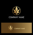 leaf beauty luxury gold logo vector image
