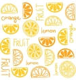 Citrus fruit seamless pattern vector image
