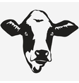 Cow head vector image