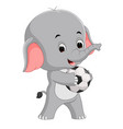 funny elephant cartoon with ball vector image vector image
