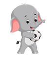 funny elephant cartoon with ball vector image