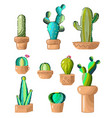 green cacti different species set of vector image vector image