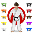 KARATE Martial Art Belt Rank System vector image