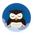 owl sleep character icon vector image