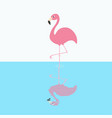 pink flamingo standing on one leg circles on the vector image vector image