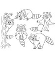 set of cute cartoon raccoons vector image vector image