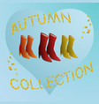 womens boots autumn collection vector image vector image