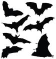 bat black silhouette vector image
