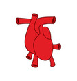 heart anatomy icon atria and ventricles veins and vector image