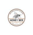 vintage rustic bee honey bee logo badge emblem vector image