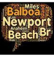 Visit Newport Beach California text background vector image vector image