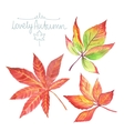 Watercolor autumn leaves vector image vector image