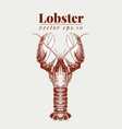 seafood lobster retro vector image