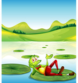 A frog above the waterlily floating at the pond vector image vector image