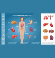cartoon woman body organs concept vector image vector image