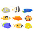 collection of colorful fish on white background vector image