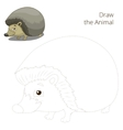 Draw the forest animal hedgehog cartoon vector image vector image
