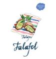 falafel vector image